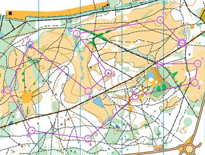 Sample of an orienteering map