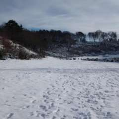 Winter at the punchbowl
